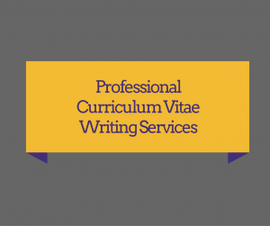 Professional Curriculum Vitae Cv Writing Services Rezzume